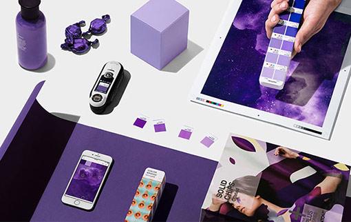 2018: Year of Purple